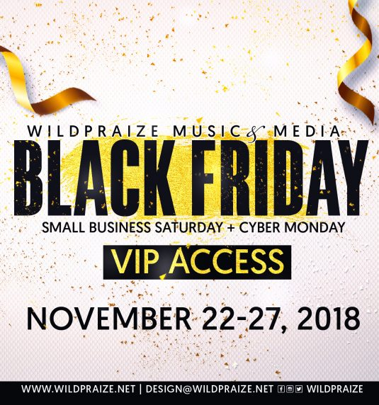 BLACK FRIDAY :: VIP ACCESS